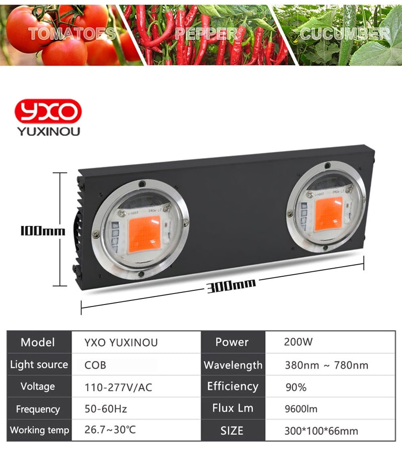 100W 200W 400W COB Led Grow Light Full Spectrum LED Grow Lamp For Vegetable Flower Indoor Hydroponic Greenhouse Plant Light